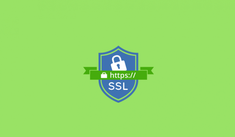 The Importance Of A Mobile Website And Having SSL Installed